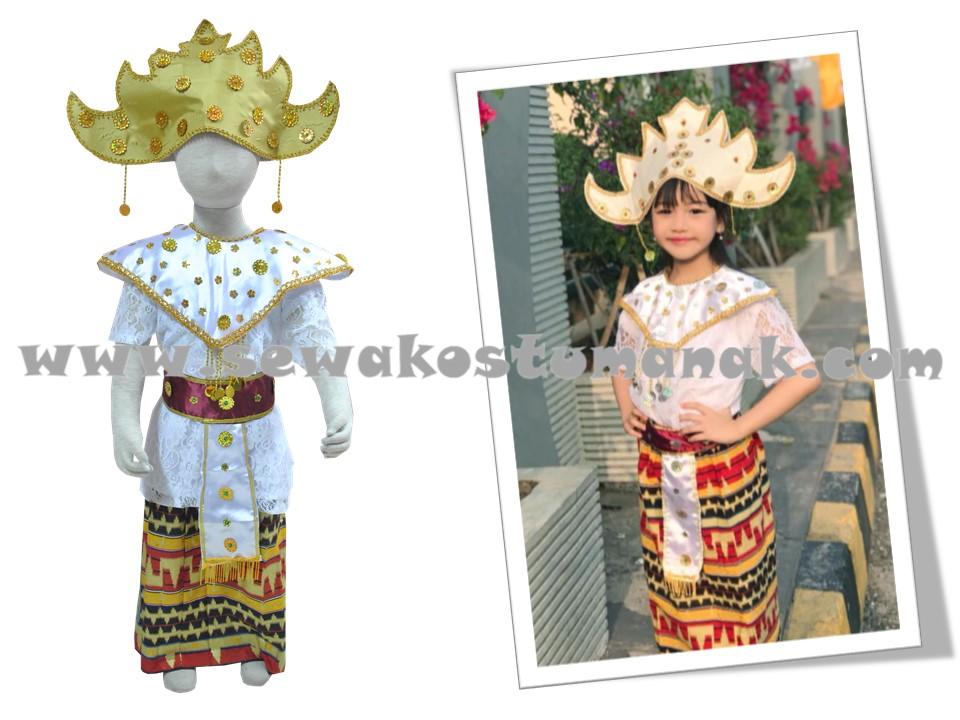 Pakaian Adat Lampung Baju Adat Lampung Sewa Baju Adat