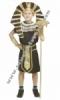 d Kostum Firaun  medium