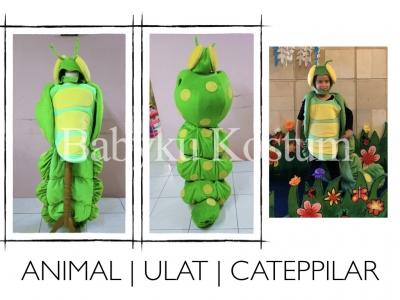 kostum catepillar.001  large